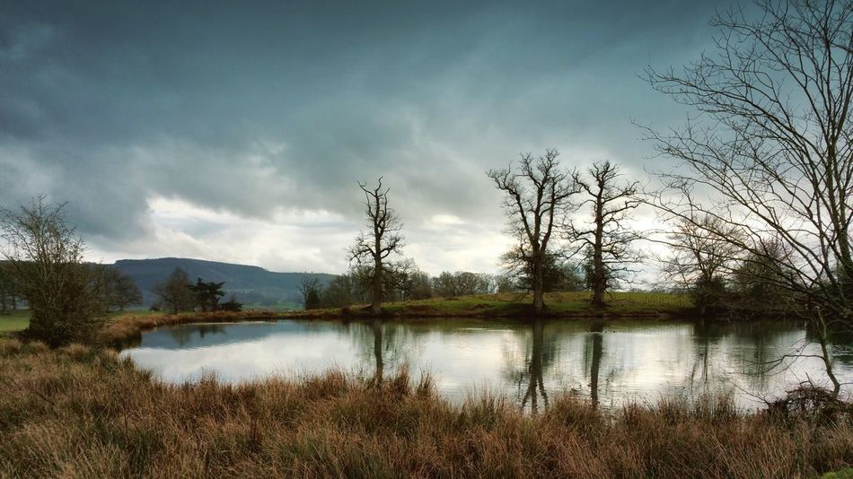 Not just being there but in a millions of places endlessly reflecting throughout the Multiverse... Lake Reflection Trees Feelings Powys Welshpool Winter Hills Landscape пруд деревья отражение Pond Park