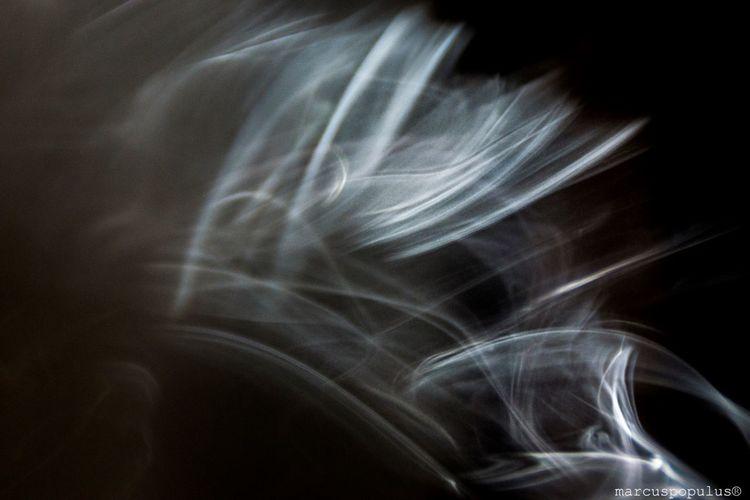 Título: Ascendit fumus (Vendedor de humo) Autor: Marcus Populus Cámara: SONY SLT-A65V Lugar: Populus Estudio/Madrid Punto F: f/6.3 Tiempo de exposición: 1/250s Velocidad ISO: 1250 Distancia focal: 150mm Abstract Black Background Close-up Day Indoors  One Person People Smoke - Physical Structure
