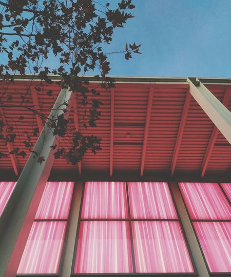 Tree Corrugated Iron Red Sky Architecture Built Structure