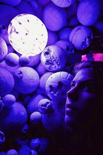 Blue Purple Close-up