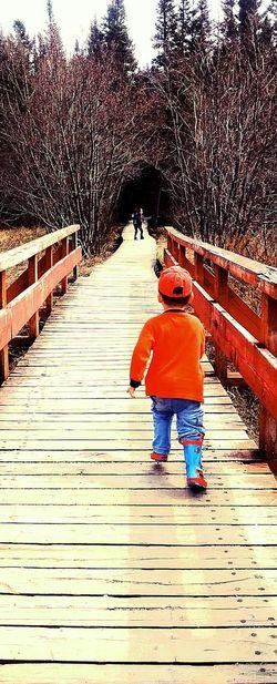 Outdoor Photography Outdoor Paysage D'été Walking Trail Children Walk Wooden Bridge