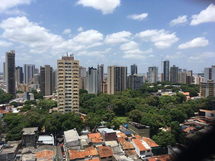 Tropical City