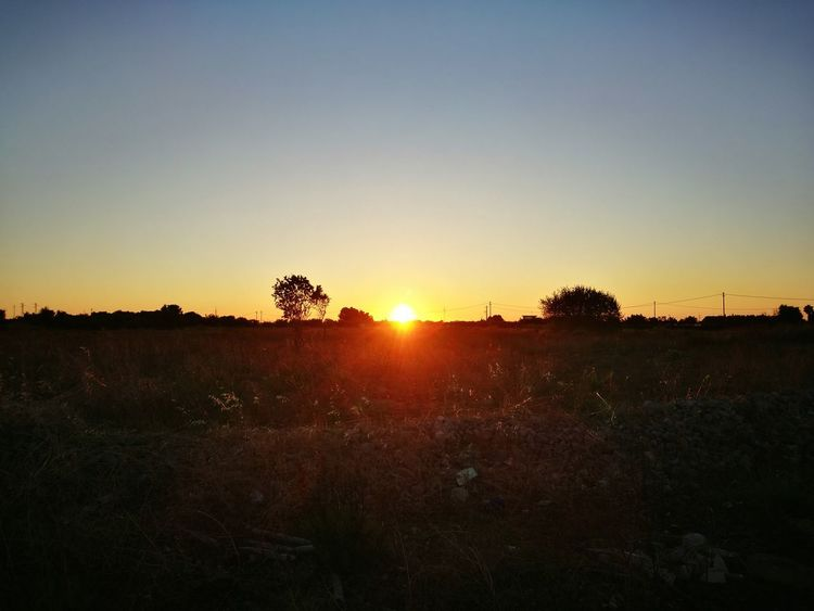 Hanging Out Taking Photos Relaxing Enjoying Life Check This Out Nature Sun Sunset Sunrise Sunset Silhouettes Sunlight Sun_collection