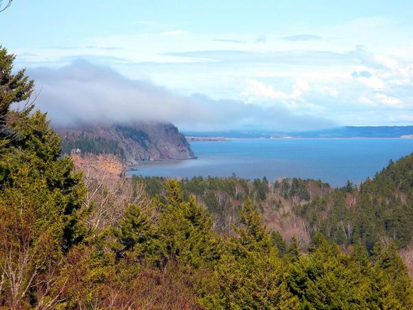 Mist rolling in over the Bay of Fundy Bay Of Fundy Ocean View Beauty In Nature Day High Angle View Horizon Over Water Landscape Mist Mist Over The Water Mountain Nature No People Outdoors Scenics Sea Sea And Sky Sky Tranquil Scene Tranquility Tree Trees And Water Trees Sky And Water Water Wilderness