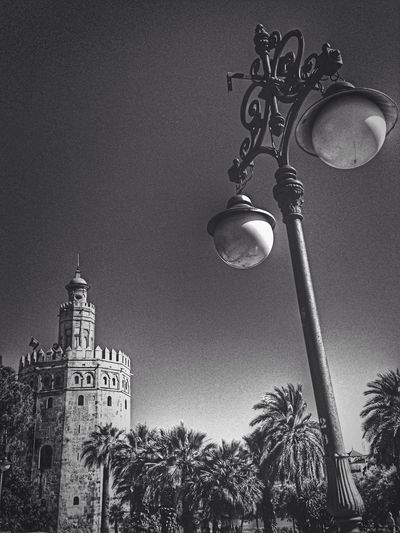 Black And White Photography Taking Photos Architecture
