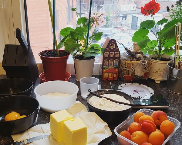 EyeEm Selects Food And Drink Healthy Eating Freshness Food No People Fruit EyeEmNewHere The Week On EyeEm Baking Ingredients Butter Apricots Vanilla Flour Flowers Indoors  Cake Homemade Egg Yolk Foodporn Cakeporn Delicious Sweet Sugar Autumn Mood