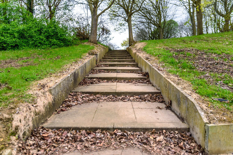 Concrete Steps Way Up England Entrance Park Garden Green Architecture Landscape Nature Path Spring Borders Historical Peace Peaceful Plants Tranquility Trees Land Uk Beautiful BIG British Class Classic English Slowly Relax Rest Footpath Pedestrian Way Welcome Place Northampton Northamptonshire Britain Empty No People Calm Cloudy Day Step Up Go Diminishing Perspective