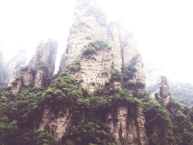 The karst mountains of zhangjiajie Zhangjiajie Travel Destinations Travel Amazing China Landscape Breathtaking View Viewpoint Yuanjiajie Karst Karst Mountain Karst Peak Peak