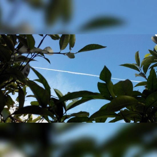 On my way to korbous !! Bonjour tout le monde !!! Morning Morninglikethis Bonjour Hiking randonnée sky sky_lovers korbous nabeul tunisie tunisia visittunisia