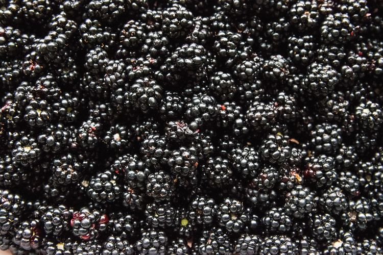 Vitamins Astronomy Backgrounds Blackberry Close-up Day Fruit Full Frame Healthy Nature No People Outdoors Summer