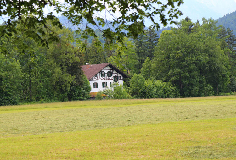 country house Bavaria Building Exterior Cottage Country Country House Field Field German House Grass House House In Forest House With Trees Landscape Outdoors Rural Scene Tiled Roof  Tiled Roof House Tree