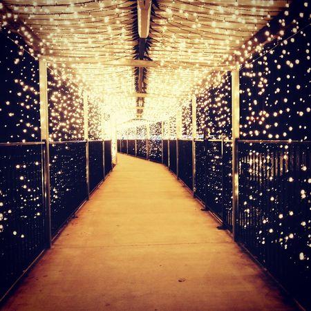 Christmas Around The World Tunnel Of Light Blessed  God Is Good Vscoaustralia Vscocam VSCO Showcase: December 43 Golden Moments