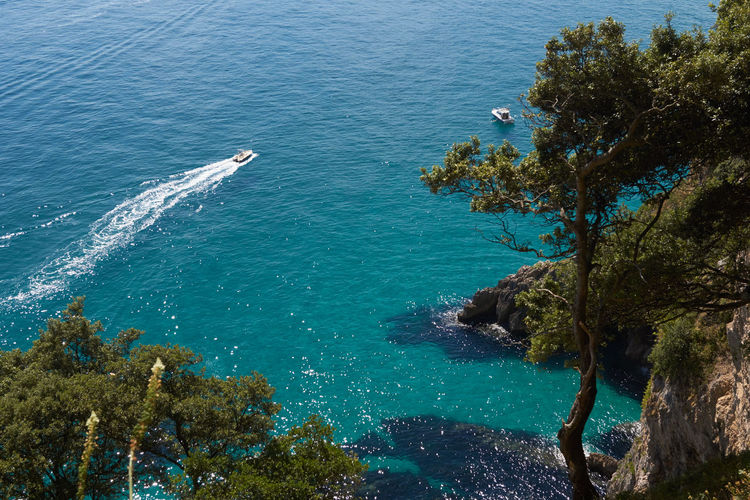 High angle view of sea against trees