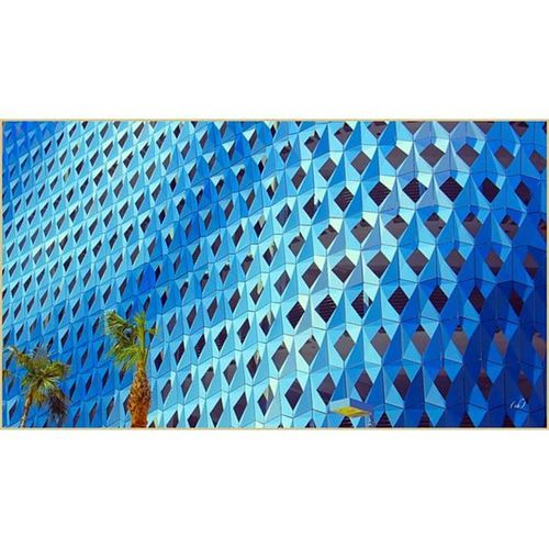 Peaudepoisson Peau Poisson Fish Skin Fishskin Palmier  Palm Miami Miamicenterdesign Architecture Design Blue Turquoise Dégradé Followme