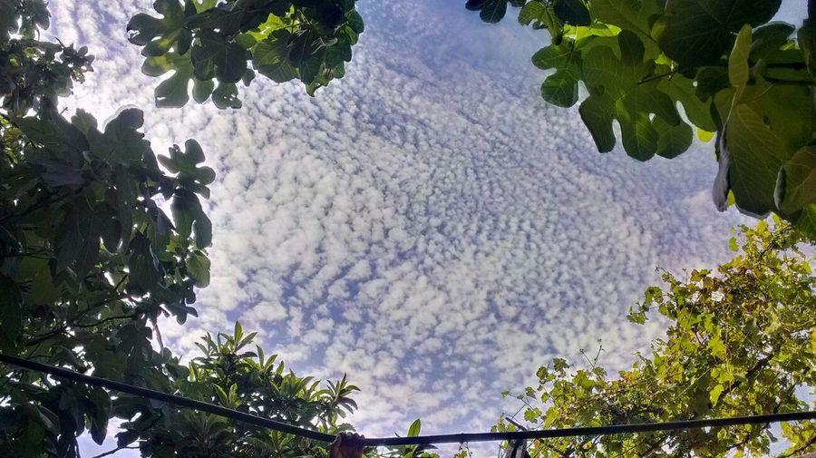 Clouds And Sky Kutaisi Bakisubani HDR