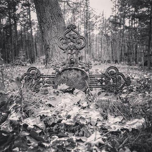 Crucifix Cross Crucifixion Poland Wroclaw Wroclove Abandonedgraveyard