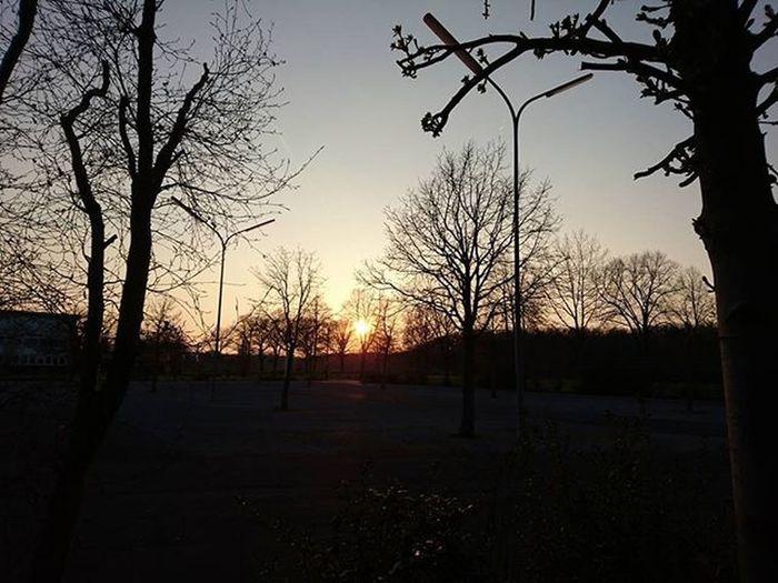 Today Sunset Epic Epicsunset Sun Tree_captures Trees Tree Landscape Landscape_captures Instalike Instadaily Instagood Spring2016 Drzewa Drzewo Zachódsłońca Krajobrazy Krajobraz Horyzont Horizon Sky Skyline Niebo Bestoftheday mobilephotography xperiaphoto