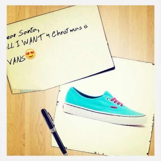 My Awesome VANS Shoe.