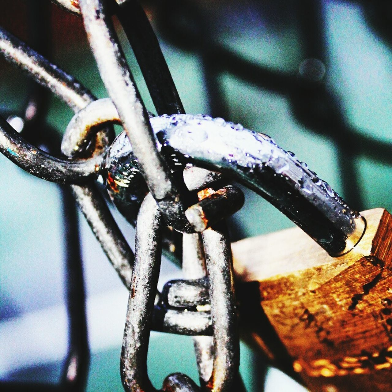 metal, close-up, no people, focus on foreground, outdoors, day, cold temperature, rusty, winter, snow