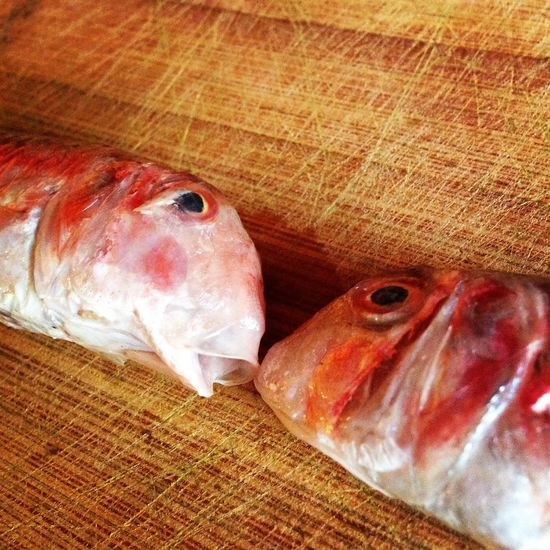 Two red mullet fish on wooden kitchen board Animal Board Catch Close Up Cuisine Fish Food Food And Drink Fresh Freshness Indoors  Ingredient Kitchen Mullet Preparation  Red Mullet Sea Sea Life Seafood Two Wooden