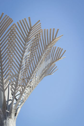 Close up image of the sculpture 'Nikau' by Sir Ian Athfield, located in Civic Square, Wellington, New Zealand Icon Nikau Palm Tree Wellington  Blue Civic Square Close Up Copper  Landmark Metal Nature_collection Night Sculpture Sir Ian Athfield Steel Structure Vertical