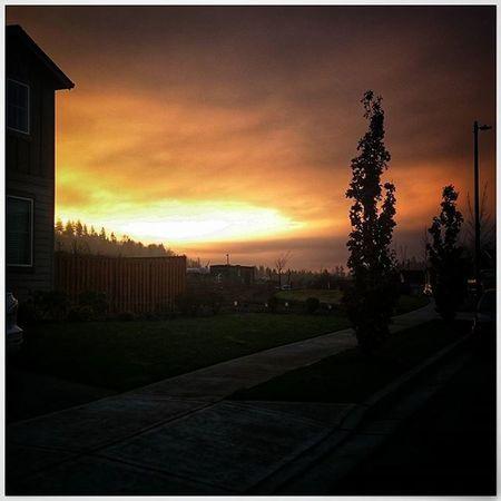 Great sunrise 🌅 from my house this morning! Sunrise Friyay Tgif Instagood Natureboyphotos Sun PNWonderland Oregon Northwest
