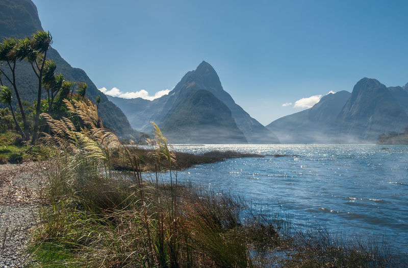 Mitre peak towering above the morning fog in milford sound