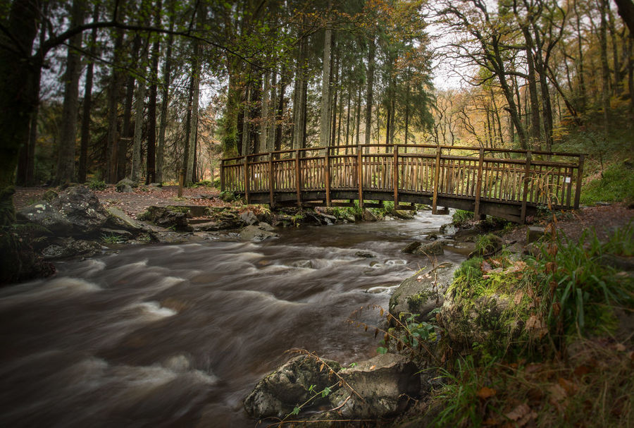 Aberfoyle Beauty In Nature Bridge - Man Made Structure Connection Day Flowing Water Forest Grass Growth Long Exposure Lush Foliage Moss Motion Nature No People Outdoors River Scenics Scotland Sky Stream - Flowing Water Tranquility Tree Water Waterfall