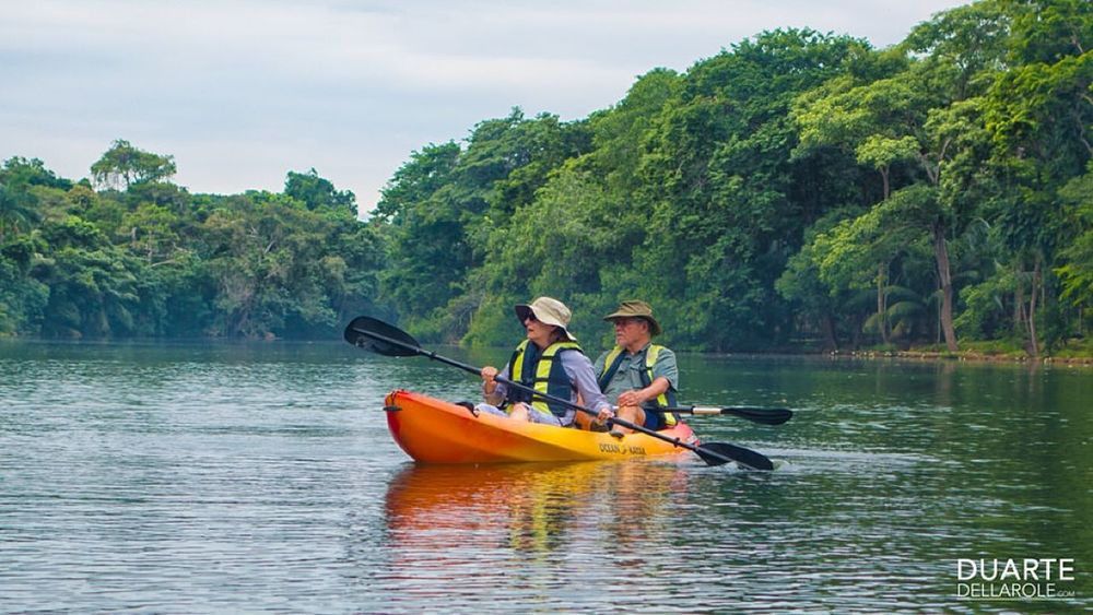 Kayak Kayaking River Redriveradventures Tropical Tropical Paradise Belize  Travel Belize Jungle Rainforest Adventure Ecotourism Centralamerica First Eyeem Photo