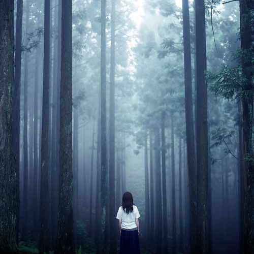 Rear view of woman standing in forest during foggy weather
