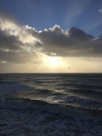 Après «Carmen»🤩 Sea Beauty In Nature Water Horizon Over Water Scenics Sunset Nature Sky Idyllic Cloud - Sky Bird Sun Sunlight Wave Outdoors