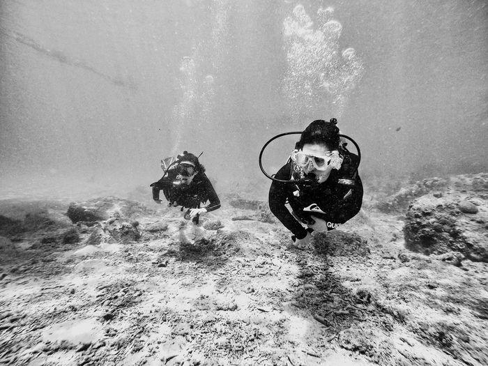 People diving over ocean floor