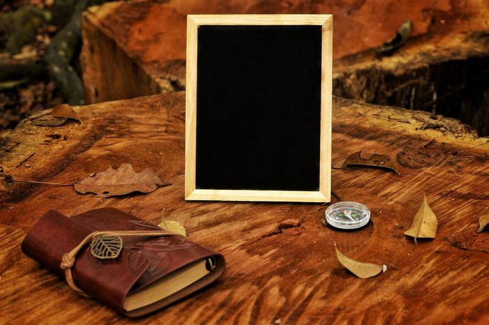 Blackboard note and compass on wooden log Frame Chalkboard Copy Space Wooden Log Wooden Photograph Compass Exploring Expedition Adventure Outdoors Navigation Travel Direction Latitude Path Navigate North South Nature Textured  Geography Directions Trek Hiking