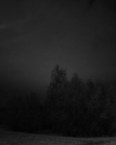 Snowy Suomi