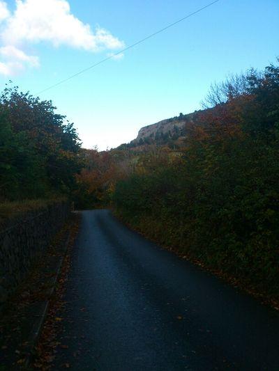Bryn Dulas Road