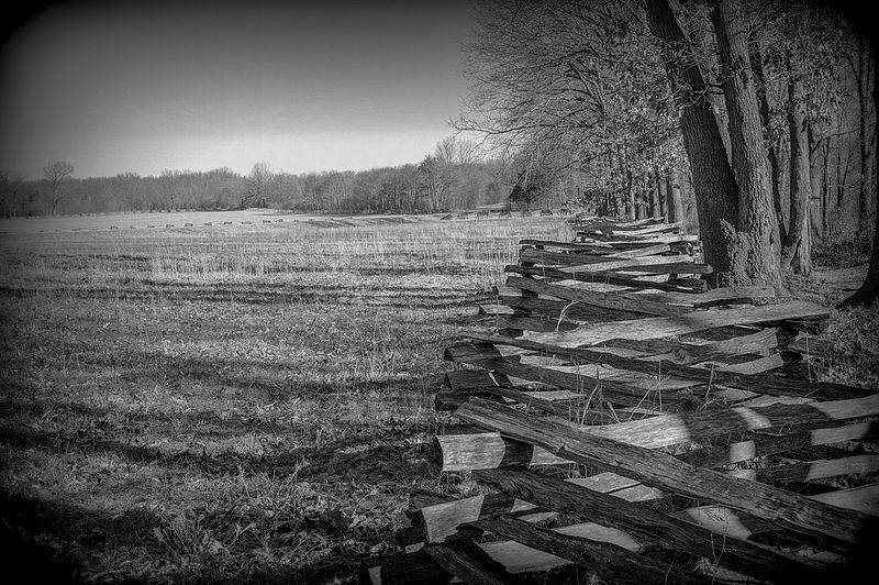 Antique Black & White Black And White Photography Calm Day Fence Fence Post Field Hay Nature No People Outdoors Peaceful View Sky Split Rail Fence Tree Trees Trees And Sky