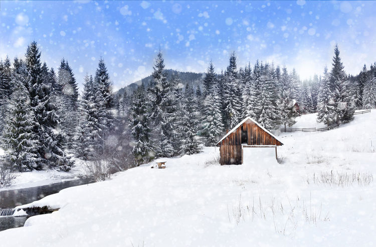 Winter wonderland with fir trees and alpine wooden barn. Christmas greetings concept with snowfall Christmas Postcard Snowing ❄ Xmas Beauty In Nature Cold Temperature Day Fir Greetings Landscape Nature No People Outdoors Pine Tree Scenics Sky Snow Snowfall Snowflake Snowing Spruce Tranquil Scene Tree Winter Winter Holidays