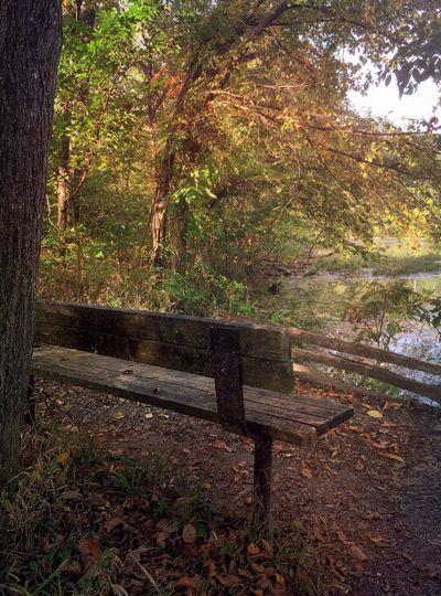 My new iPhone 6 Landscape, Springfield Missouri, Springfield Nature Center First Eyeem Photo
