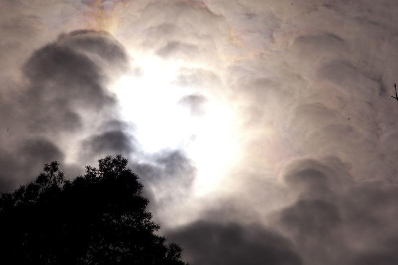 Cloud Cloud - Sky Cloudscape Cloudy Dramatic Sky Outdoors Sky Sunbeam Tree Treetop