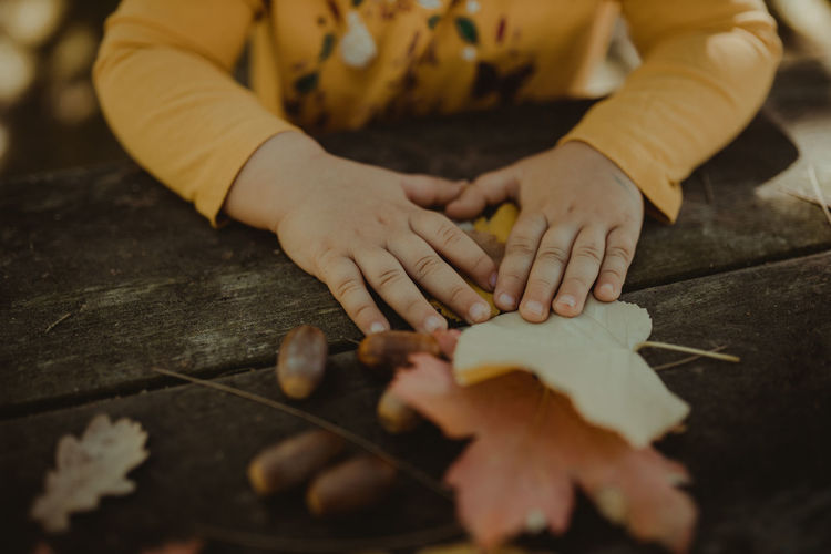 Close-up of hand holding leaf on table
