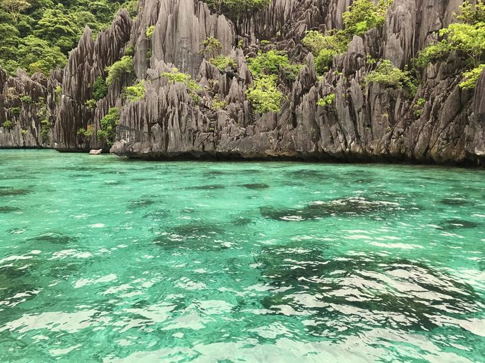 Rock - Object Nature Beauty In Nature Scenics Green Color Water Sea No People Outdoors Day Tree Sky El Nido, Palawan Philippines El Nido, Palawan Crystal Clear Waters Shotoniphone7 Philippines Beauty In Nature