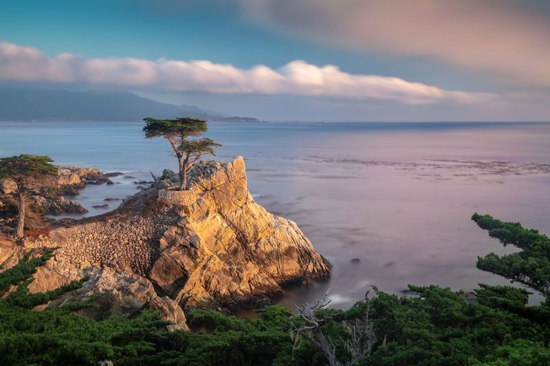 Lone Cypress Eyemphotography EyeEm Nature Lover EyeEm Best Shots Long Exposure Lone Cypress Carmel California Carmel-by-the-sea USA Scenics - Nature Tranquil Scene Land Nature Plant Horizon Over Water No People Non-urban Scene Horizon Tree Idyllic Rock Outdoors