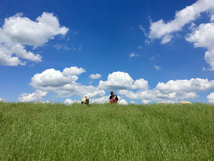 Man crouching by sheep on grassy field against sky