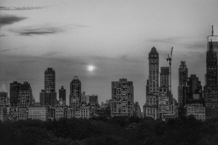 Black And White City Life City Scape Check This Out Cityscape NYC From My Point Of View NYC LIFE ♥ Check This Out NYC Photography Hotel Room Hotel Window Hotel Room View Battle Of The Cities