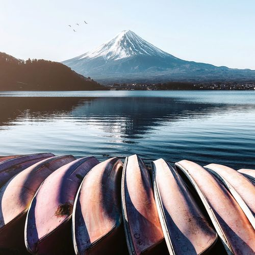 Morning by the Kawaguchiko Japan Mt Fuji Morning Light Morning Sun Sunrise Mountain Water Nature Sky Beauty In Nature Scenics - Nature Day No People Lake Outdoors Sunlight Tranquil Scene Tranquility Vertebrate Winter Non-urban Scene Mountain Range Snow