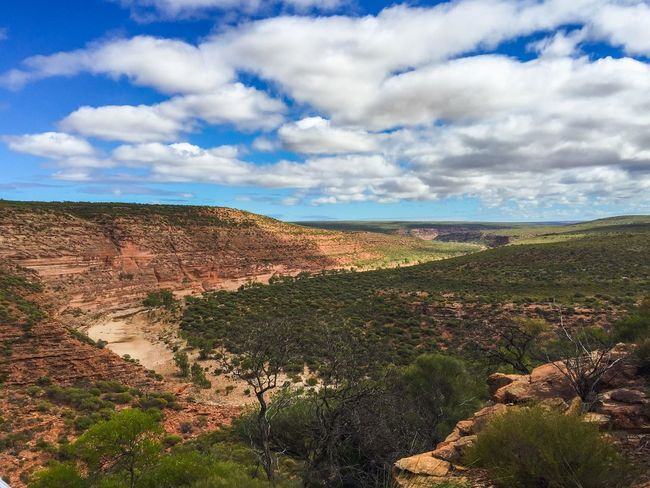 Kalbarri: Travel Western Australia Series Elevated View Scenics Plants 🌱 Rock Sandstone Valley Gorge Peaceful View Geological Hiking Travel Photography The Great Outdoors With Adobe Nature's Design Connected With Nature (null)Travel Destinations Landscape Western Australia (null)Australia Nature Photography Kalbarri Nature Land