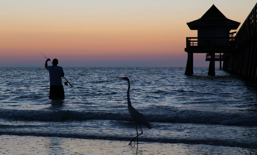 Water Tranquility Sky Sea Scenics Pier Outdoors Nature Gulf Of Mexico Florida Built Structure Beauty In Nature Beach Naples, FL Naples Pier Naples Silhouette Fishing