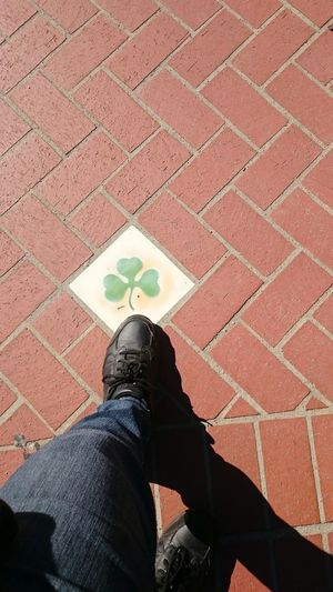 Shamrock,, shoe, shadow, Human Body Part Standing Human Leg Day Lifestyles Real People One Woman Only
