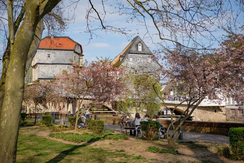 Adult Adults Only Architecture Beauty In Nature Blossom Building Exterior Charming City Day Flower Outdoors People Pub Sky Springtime Tourism Travel Travel Destinations Tree