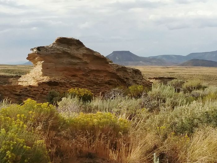 Desert Landscape Rock - Object Travel Destinations Mountain Outdoors Cloud - Sky No People Nature Arid Climate Beauty In Nature Sky Scenics Day Nature Reserve Wyomingphotographer Desert Wyoming USA Tranquility Tranquil Scene